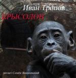 Аудиокнига Крысолов