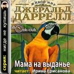 Аудиокнига Мама на выданье