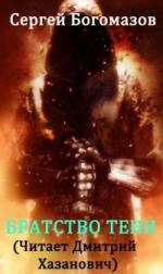 Аудиокнига Объект-12. Книга 2. Братство тени