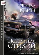 Аудиокнига Повелители стихий. Книга 1. Злой ветер