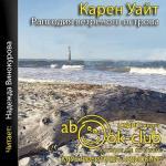 Аудиокнига Рапсодия ветреного острова