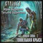 Аудиокнига S.T.A.L.K.E.R. / Новая зона. Книга 10. Тоннельная крыса