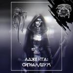 Аудиокнига Сигнал - шум