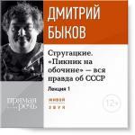 Аудиокнига Стругацкие. Пикник на обочине – вся правда об СССР. Часть первая