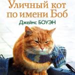 Аудиокнига Уличный кот по имени Боб