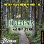 Аудиокнига В лесах. Книга 1