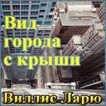 Аудиокнига Вид города с крыши